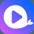 大鱼视频助手app