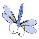 小蜻蜓盒子