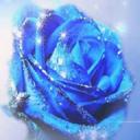 蓝色妖姬梦直播宝盒