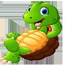 金海龟TV1.8.9电视盒子版