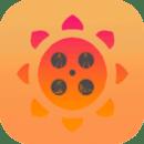 黄瓜丝瓜向日葵幸福宝