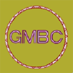GMBC挖矿软件