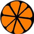 橙子资源网app