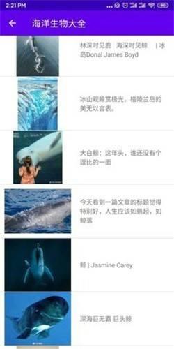 海洋生物大全截图