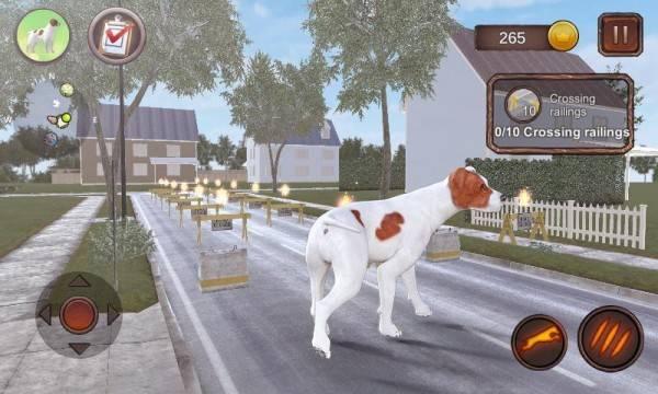帕森斯犬模拟器