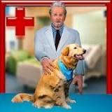 动物宠物医生