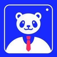 熊猫证件照