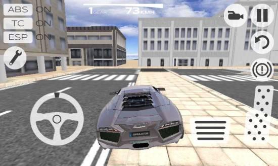 3D极限驾驶模拟器截图