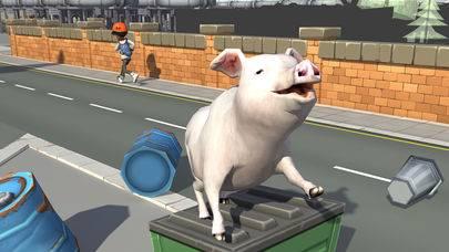 抖音小猪模拟器截图