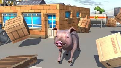 疯猪模拟器截图