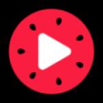 西瓜视频旧版本4.4.4百度版