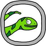 飞机上的蛇