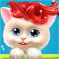 猫咪美发沙龙