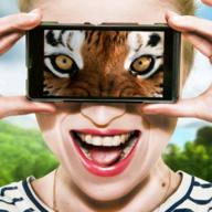 抖音动物视觉模拟器