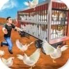 公鸡养殖场破解版