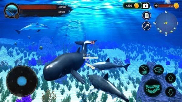 抹香鲸模拟器截图