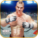 MMA搏击