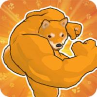 fight of animals手机版