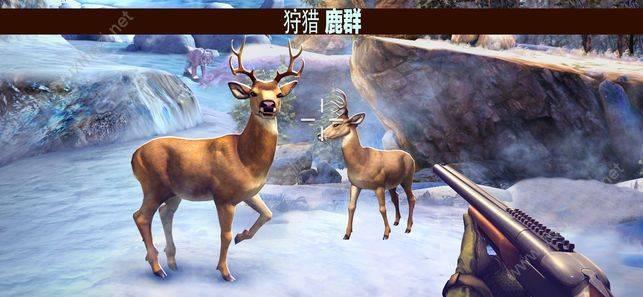 猎鹿人2019官网版截图